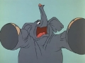 tom-es-jerry_-_145-a_cirkuszi_elefant-06