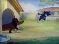 tom-es-jerry_-_016-tom_elkutyul-22