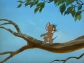 tom-es-jerry_-_021-turbekolo_madarka-08