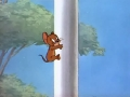 tom-es-jerry_-_063-a_repulo_macska-23